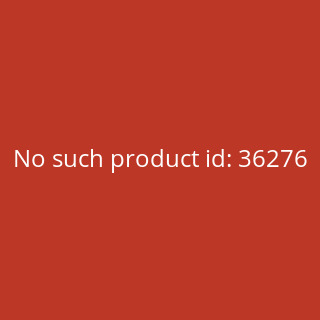 Thesaurus Latinus